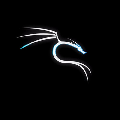 Kali Linux cambia look e può trasformarsi in Windows 10