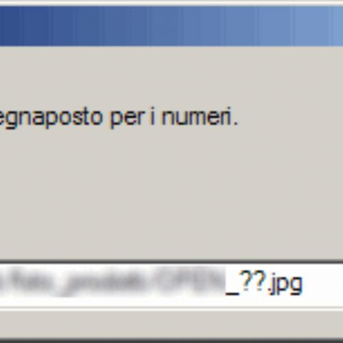 Download iterativo di un certo numero di file da un server remoto