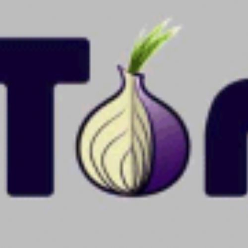 TOR: un software per proteggere la propria privacy ed